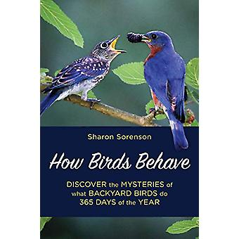 How Birds Behave - Discover the Mysteries of What Backyard Birds Do 36