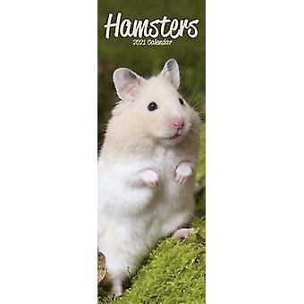 Hamsters 2021 Slim Calendar by Created by Avonside Publishing Ltd