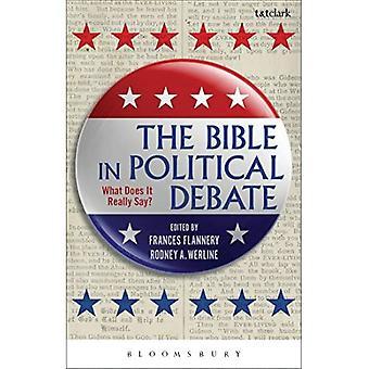 Bibeln i politisk debatt: Vad säger det egentligen?
