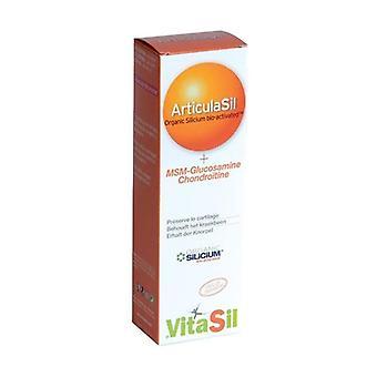 Vitasil Articulasil Msm Gel 50 ml