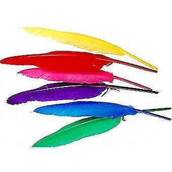 12 Surtido 27cm Plumas Quills para Artesanía