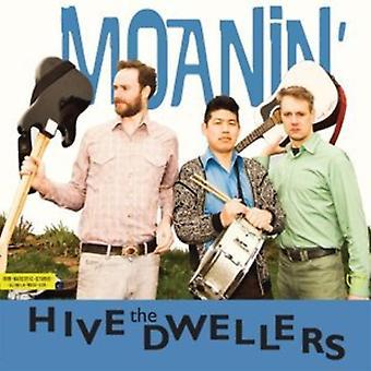 Hive Dwellers - Moanin [CD] USA import