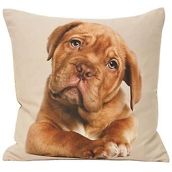 Riva Home Animal Dog Cushion Cover