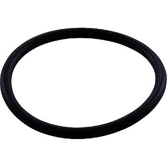 Jandy Zodiac R0544000 O-ring WMS Upper to Vactube Interface