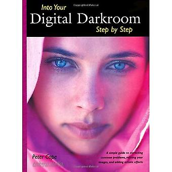 Into Your Digital Darkroom: Step by Step