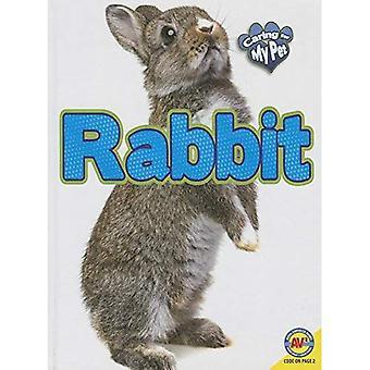 Kanin (ta hand om mina husdjur)