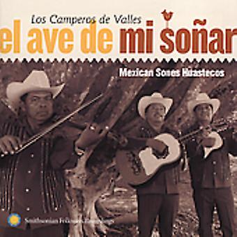 Los Camperos De Valles - El Ave De MI Sonar: Importação de EUA mexicano Sones Huaste [CD]