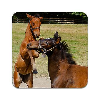 2 ST Mare & Foal Coasters