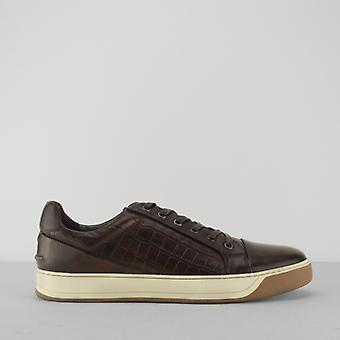 Azor Lazio mens Leather faux reptiel sneakers bruin