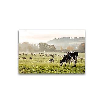 Mooie Cow Field Scenery Poster -Image door Shutterstock