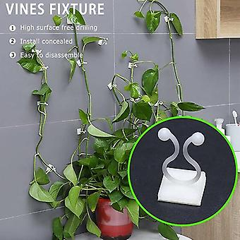 Invisible Wall Vines Fixture Wall Sticky Hook Climbing Vine Plant Fixer Home