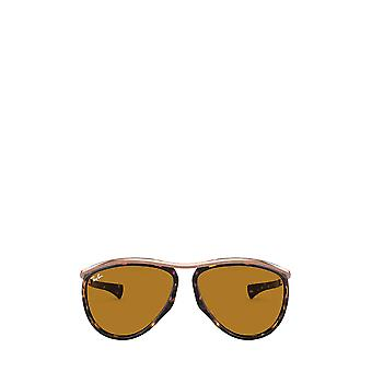 Ray-Ban RB2219 havana unisex solglasögon