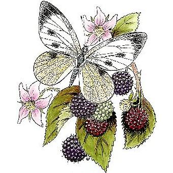 GP Bramble Butterfly Wood Mounted Stamp
