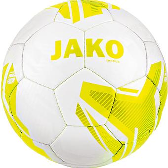 James youth ball striker 2.0 MS