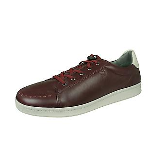 Sledgers George Mens Leather Trainers / Shoes - Wine