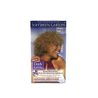 Softsheen Carson Dark & Lovely 384 Light Golden Blonde Color ( 2 Pack )