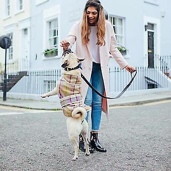 Jasper Dog Coat - Gargrave Lilac