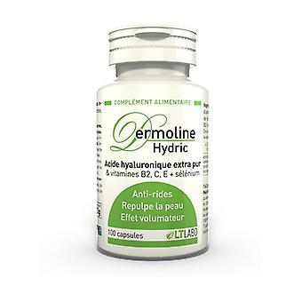 Dermoline Hydric 100 capsules