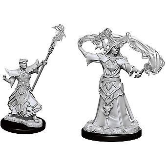 Pathfinder Battles Deep Cuts omålade miniatyrer Manliga Mänskliga Sorcerer Pack av 6