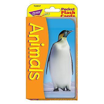 Tarjetas flash de bolsillo para animales