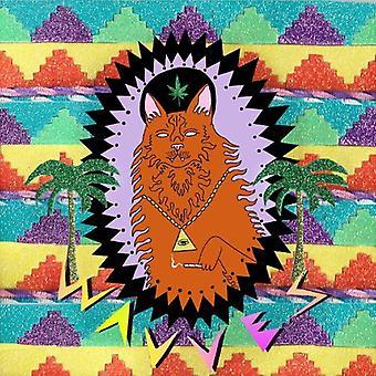 Wavves - King of the Beach [Vinyl] USA import