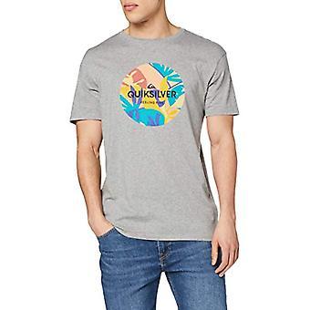 Quiksilver Summers End-Men's T-Shirt, Medium Grey Heather, XS