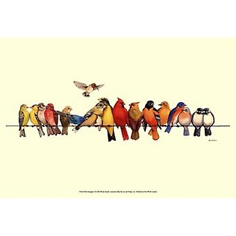 Птица Menagerie я плакат печати Венди Рассел (19 x 13)