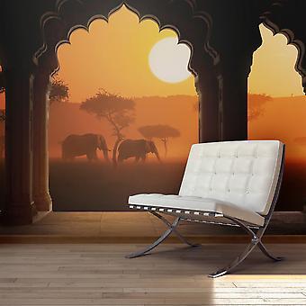 Papier peint - Hear Africa
