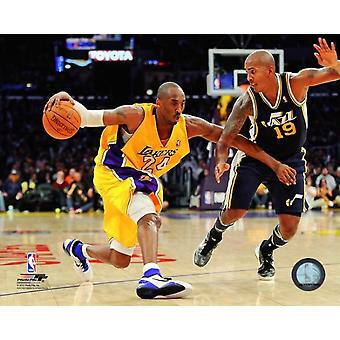 Kobe Bryant 2011-12 Action Photo Print (8 x 10)