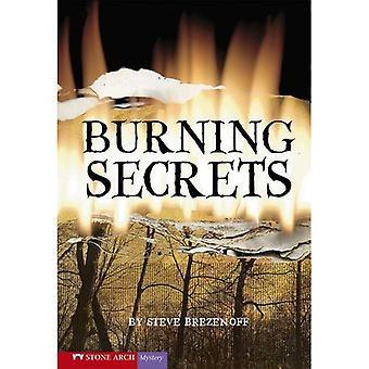 Brændende hemmeligheder (Vortex bøger)