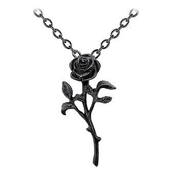 Alchemy gotiske romantikk av Black Rose anheng
