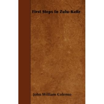 First Steps In ZuluKafir by Colenso & John William