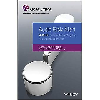 Audit Risk Alert: General Accounting and Auditing Developments 2018/19 (AICPA)