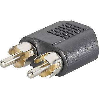 SpeaKa Professional RCA / Jack Audio/Chinch Y [2 x RCA plug (fono) - 1 x Jack aansluiting 3,5 mm] zwart