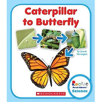 Raupe zum Schmetterling (Rookie Read About Science)
