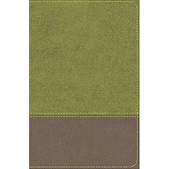 KJV Study Bible for Boys Olive/Brown LeatherTouch