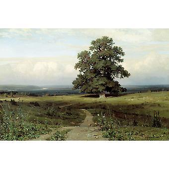 المناظر الطبيعية، إيفان شيشكين، 60x40cm