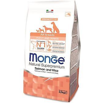 Monge NS valp lax och ris (hundar, hundmat, torka mat)
