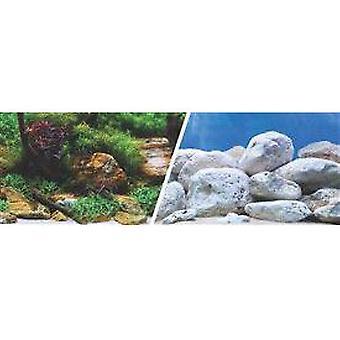 Marina Clear View 3D Jardin Acuatico / Piedras
