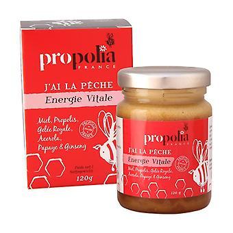 Vital energy propolis, honey, royal jelly, ginseng 120 g
