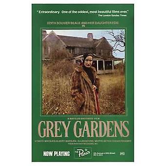 Grey Gardens Movie Poster (11 x 17)
