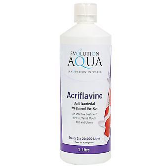 Evolution Aqua Med Acriflavine 500ml