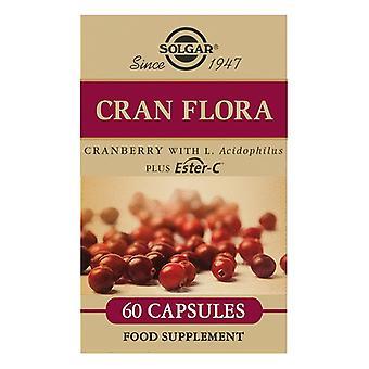 Cran Flora (Cranberry with Probiotics and Ester-C Solgar (60 Capsules)