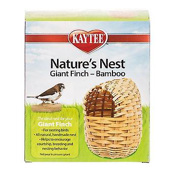 """Гнездо природы Кайти Бамбуковое гнездо - Зяблик - Гигант - (5.5""""Д x 3""""Ш x 6.4""""В)"""