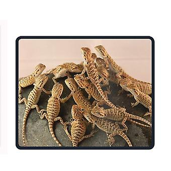 Mouse pads 260x210x3 yanteng non-slip rubberpersonalise computer mouse pad-bearded dragon lizards