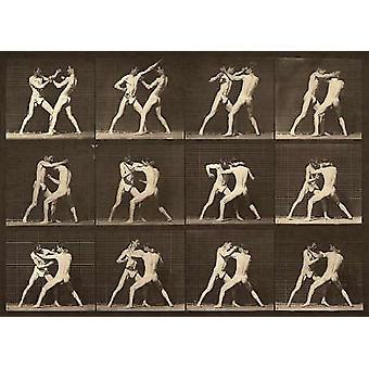 Estudio de movimiento hombres luchando impresión de póster por Eadweard Muybridge