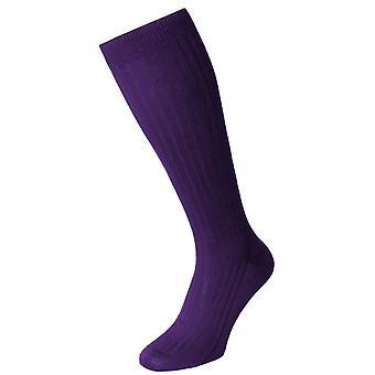 Pantherella Danvers katoen Lisle Over de kalf sokken - Crocus Purple