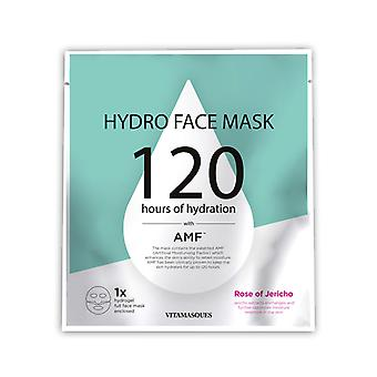 Vitamasques Hydro Face Mask-Rose of Jericho (1 pc)