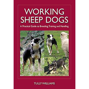 Working Sheep Dogs - A Practical Guide to Breeding - Training and Hand
