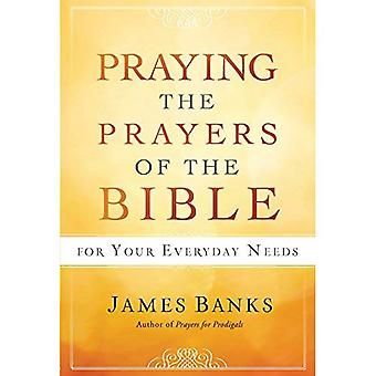 Praying the Prayers of the� Bible for Your Everyday Needs
